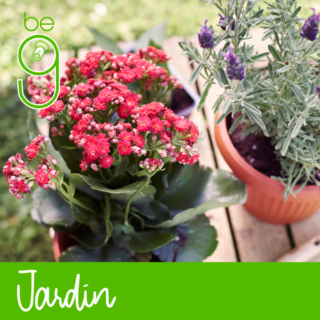 jardin 1024x1024 - Ferretería, Hogar y Jardín